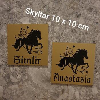 Nr 2 Namnskylt flera färger svart silvrig guldig 10 x 10 cm islandshäst + namn