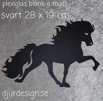 Plexiglas svart blank o matt 28 x 19 cm går att få med text på.