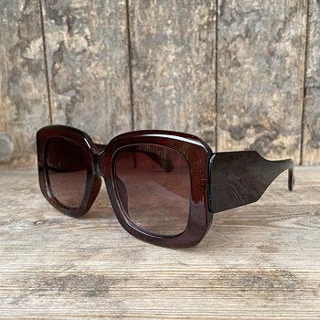 solglasögon stora bruna