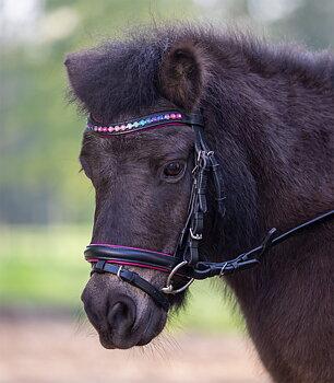Träns Star Pinky