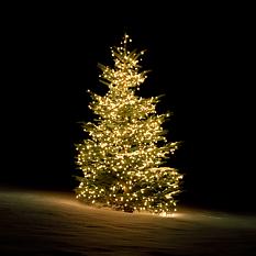 Deltaco Smart Home WiFi julgransbelysning, inomhus/utomhus, varmvit