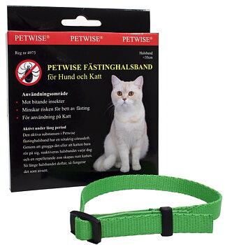 Fästinghalsband för katt Petwise