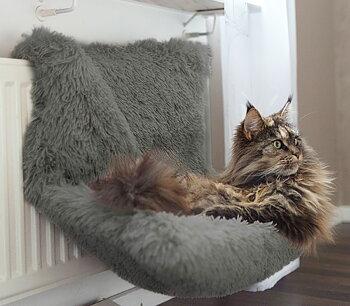 Elementsäng för katter i grå lurvig päls.