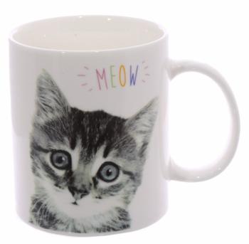 Mugg, Kattunge Meow