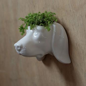 Väggkruka i keramik, Hund