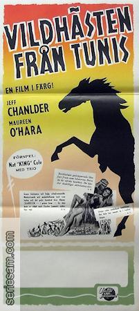 Vildhästen från Tunis