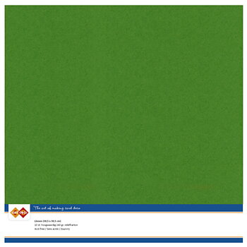 Cardstock - Linnen -fern green-10 pack (Card deko)