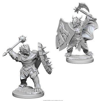 D&D Nolzurs Marvelous Miniatures: Dragonborn Male Paladin