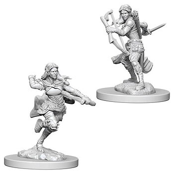 D&D Nolzurs Marvelous Miniatures: Air Genasi Female Rogue