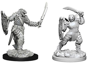 D&D Nolzurs Marvelous Miniatures: Dragonborn Female Paladin
