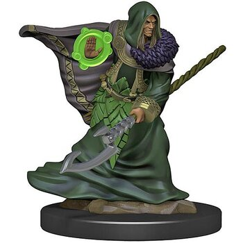 D&D Premium Painted Figure: Male Elf Druid