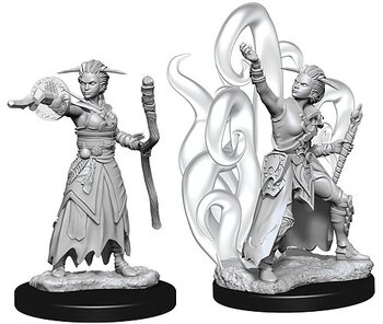 D&D Nolzurs Marvelous Unpainted Miniatures: Female Human Warlock