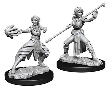 D&D Nolzurs Marvelous Unpainted Miniatures: Female Half-Elf Monk