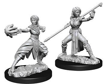 D&D Nolzurs Marvelous Unpainted Miniatures: Female Half-Elf Monk
