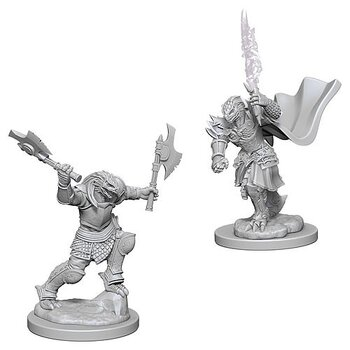 D&D Nolzurs Marvelous Unpainted Miniatures: Dragonborn Female Fighter
