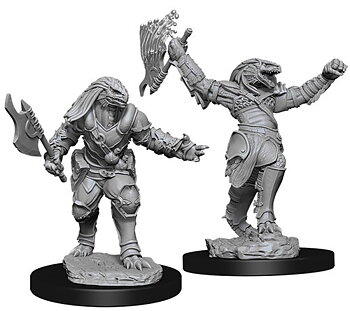 D&D Nolzurs Marvelous Miniatures: Female Dragonborn Fighter