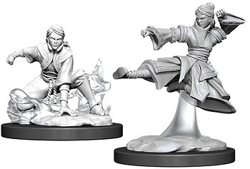 D&D Nolzurs Marvelous Miniatures: Female Human Monk