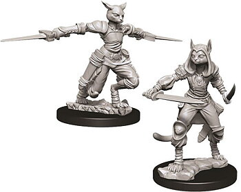 D&D Nolzurs Marvelous Miniatures: Female Tabaxi Rogue