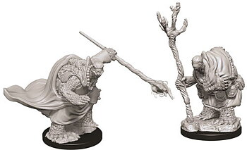 D&D Nolzurs Marvelous Miniatures: Tortle Adventurers