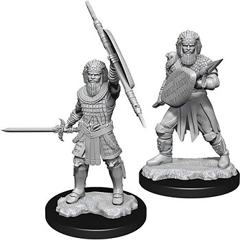 D&D Nolzurs Marvelous Miniatures: Male Human Fighter