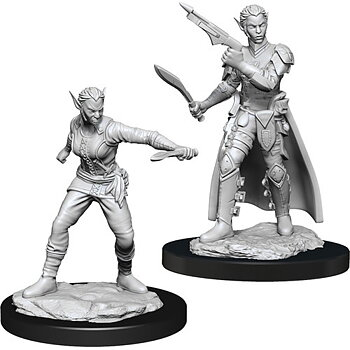 D&D Nolzurs Marvelous Miniatures: Female Shifter Rogue