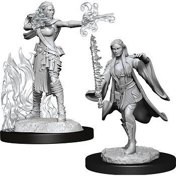 D&D Nolzurs Marvelous Miniatures: Female Multiclass Warlock + Sorcerer
