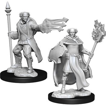 D&D Nolzurs Marvelous Miniatures: Male Multiclass Cleric + Wizard