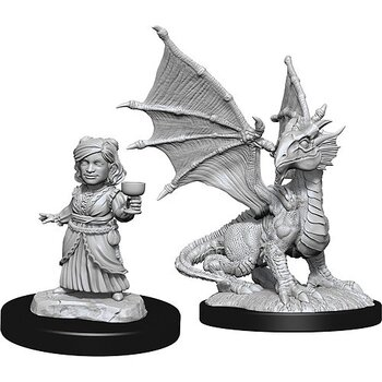 D&D Nolzurs Marvelous Miniatures: Silver Dragon Wyrmling & Dragon Friend