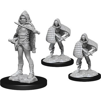D&D Nolzurs Marvelous Miniatures: Darkling Elder & Darklings