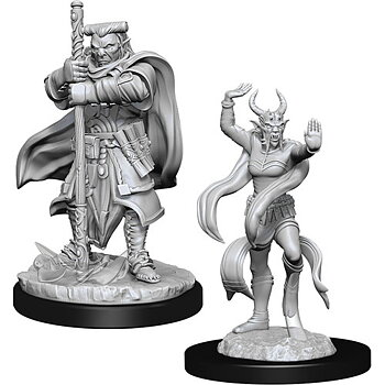 D&D Nolzurs Marvelous Miniatures: Hobgoblin Devastator & Iron Shadow