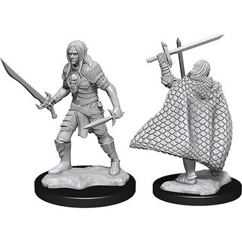 Pathfinder Battles Deep Cuts Minis: Male Elf Fighter