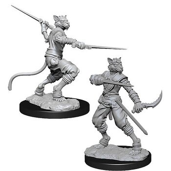D&D Nolzurs Marvelous Miniatures: Male Tabaxi Rogue