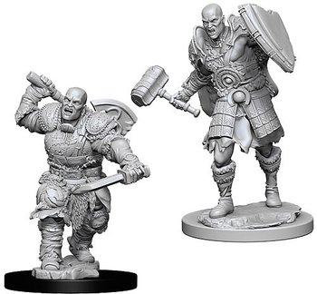 D&D Nolzurs Marvelous Miniatures: Male Goliath Fighter