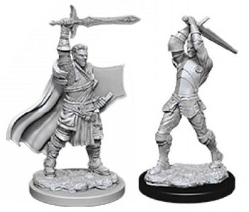 D&D Nolzurs Marvelous Miniatures: Male Human Paladin