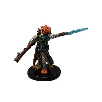 D&D Waterdeep Dragon Heist #012b Dragonborn Draconic Sorcerer (Green Robe) (C)