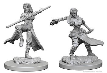 D&D Nolzurs Marvelous Miniatures: Human Female Monk