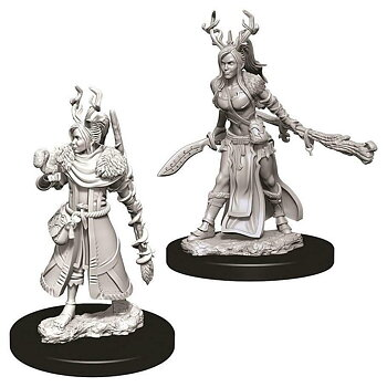 D&D Nolzurs Marvelous Miniatures: Female Human Druid