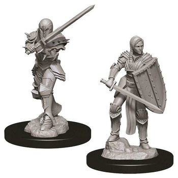 D&D Nolzurs Marvelous Miniatures: Female Human Fighter