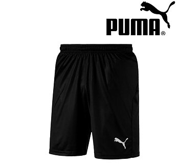 Puma Liga Core Shorts SR