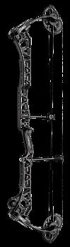 TRX 38 - G2