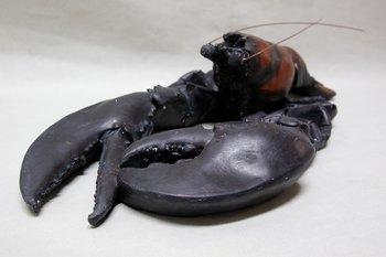 Lobster 50x21 cm