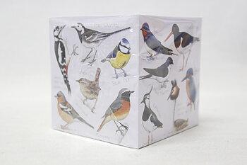 Note Cube Fåglar 10x10 cm