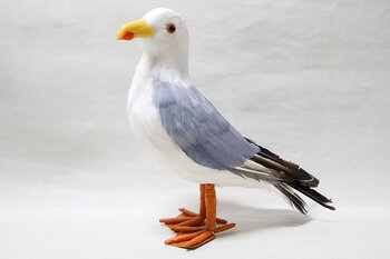 Great black-backed Gull Standing 29x25x11 cm