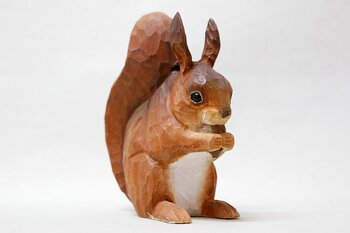 Red squirrel 14x14 cm