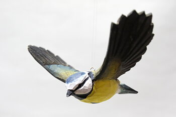 Eurasian blue tit flying 13x9 cm