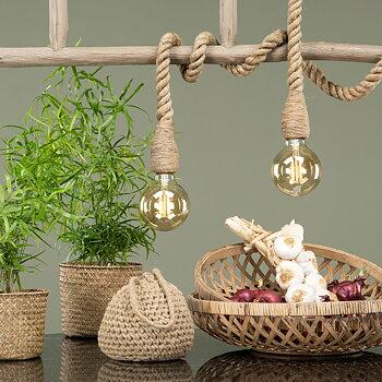 Lampa Rep i Natur