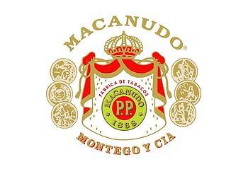 Macanudo Connecticut Ascot
