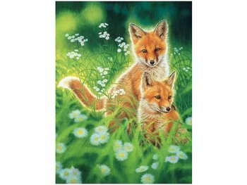 Picture 3D Spring Foxes