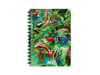 Notebook 3D Funky frogs small