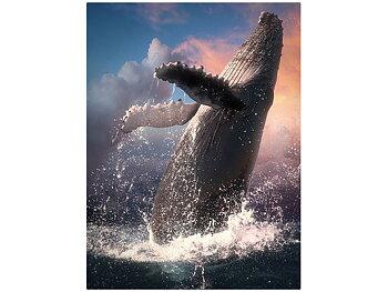 Card 3D Whale jump